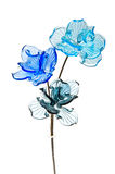 Glass flowers Royalty Free Stock Photos