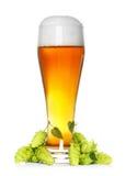 glass flygtur för öl royaltyfria bilder