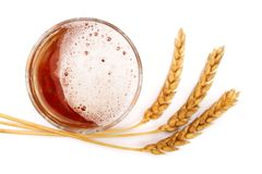 Glass of foamy beer with wheat isolated on white background. Top view Royalty Free Stock Images