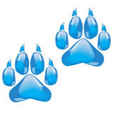 Glass footprints of a big cat Royalty Free Stock Photo