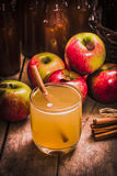 Glass of fresh apple cider. Close up of glass with fresh apple cider with cinnamon stick. Ripe apples behind Stock Photography