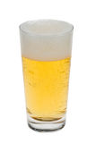 Glass of fresh beer royalty free stock image