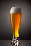 Glass of fresh beer with cap of foam Stock Images