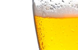 Glass of fresh beer with drops on white background Royalty Free Stock Images