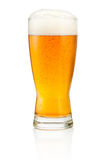 Glass of fresh beer isolated on white background Royalty Free Stock Photo