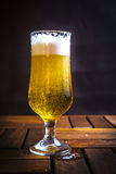 Glass of Fresh, Cold Beer Royalty Free Stock Images