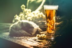 Glass of fresh cold beer in rustic setting. Food and beverage ba stock image