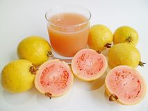 Guava (Psidium guajava) Stock Photos