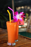 Glass of fresh juice and orchid. Two glasses of fresh mango  juice and orchid Stock Images