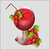 Glass of fresh juice from red currant. Stock Photo