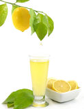 Glass of a fresh lemon juice Stock Photos