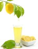 Glass of a fresh lemon juice Stock Photos