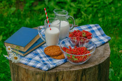 Glass of fresh milk with fresh raspberries ripe for breakfast on. Glass of fresh milk with fresh raspberries ripe for breakfast and books on a wooden background Royalty Free Stock Images