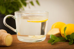Glass of fresh mint and ginger tea Royalty Free Stock Photo