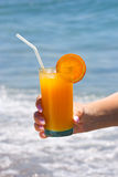 Glass of fresh orange juice Royalty Free Stock Photos