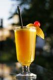Glass of fresh orange juice. Glass of fresh and tasty orange juice Royalty Free Stock Image