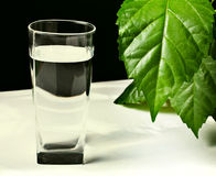Glass of fresh water Royalty Free Stock Images