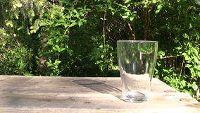 Glass of Fresh Water Royalty Free Stock Image