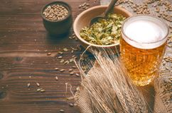 Glass of frothy beer, malt and hop. Cold foam beer with malt grain, green hop leaves in the pots and rye ears on burlap cloth on brown wooden table background stock photos