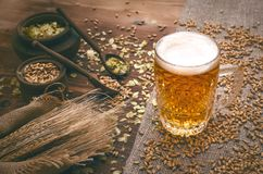 Glass of frothy beer, malt and hop. Cold foam beer with malt grain, green hop leaves in the pots and rye ears on burlap cloth on brown wooden table background royalty free stock image