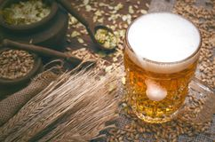 Glass of frothy beer, malt and hop. Cold foam beer with malt grain, green hop leaves in the pots and rye ears on burlap cloth on brown wooden table background royalty free stock photo