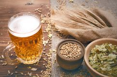 Glass of frothy beer, malt and hop. Cold foam beer with malt grain, green hop leaves in the pots and rye ears on burlap cloth on brown wooden table background stock images