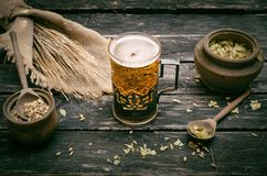 Glass of frothy beer, malt and hop. Beer in the mug glass with malt and hop and rye ears on the aged wooden table background royalty free stock image