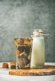 Glass with frozen coffee ice cubes and milk in bottle Royalty Free Stock Photos