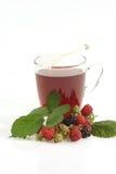 Glass of fruit tea Stock Photos