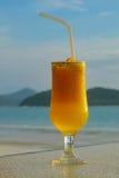 glass fruktsaft royaltyfri foto