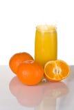 glass fruktsaftfärgstänk Royaltyfria Bilder