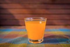 glass fruktsaftorange Fotografering för Bildbyråer