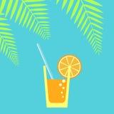 glass fruktsaftsugrör vektor Arkivfoto