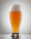 Glass full of beer and foam on a gray background Royalty Free Stock Image