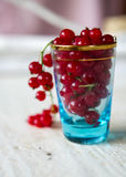 Glass full of Cranberries Stock Images