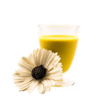 Glass full yellow cocktail and a flower on a white background Stock Image