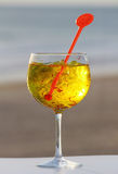 Glass of gin with spices - yellow Royalty Free Stock Photo