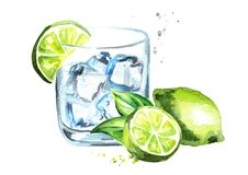Glass of Gin tonic with ice cubes and lime. Watercolor hand drawn illustration, isolated on white background.  Stock Photography
