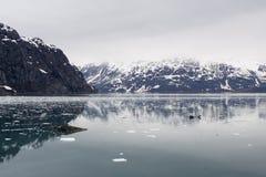 Glass Glacier Bay Alaska Royalty Free Stock Image