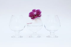 Glass glasses and orchid Stock Images