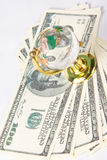 Glass globe and dollars Royalty Free Stock Images