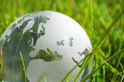 Glass globe or earth in grass Royalty Free Stock Photos