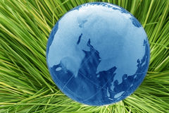Glass globe in grass Stock Photos