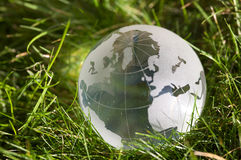 Glass globe in grass Royalty Free Stock Photography