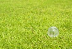 Glass globe Stock Photography