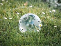 Glass globe in the grass. Stock Photo