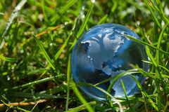 Glass globe in the grass Stock Photography