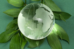 Glass globe on green leaf Royalty Free Stock Photos
