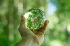Glass globe in the hand Stock Image