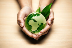 Glass globe in hand. Glass globe with leaves in hand stock image